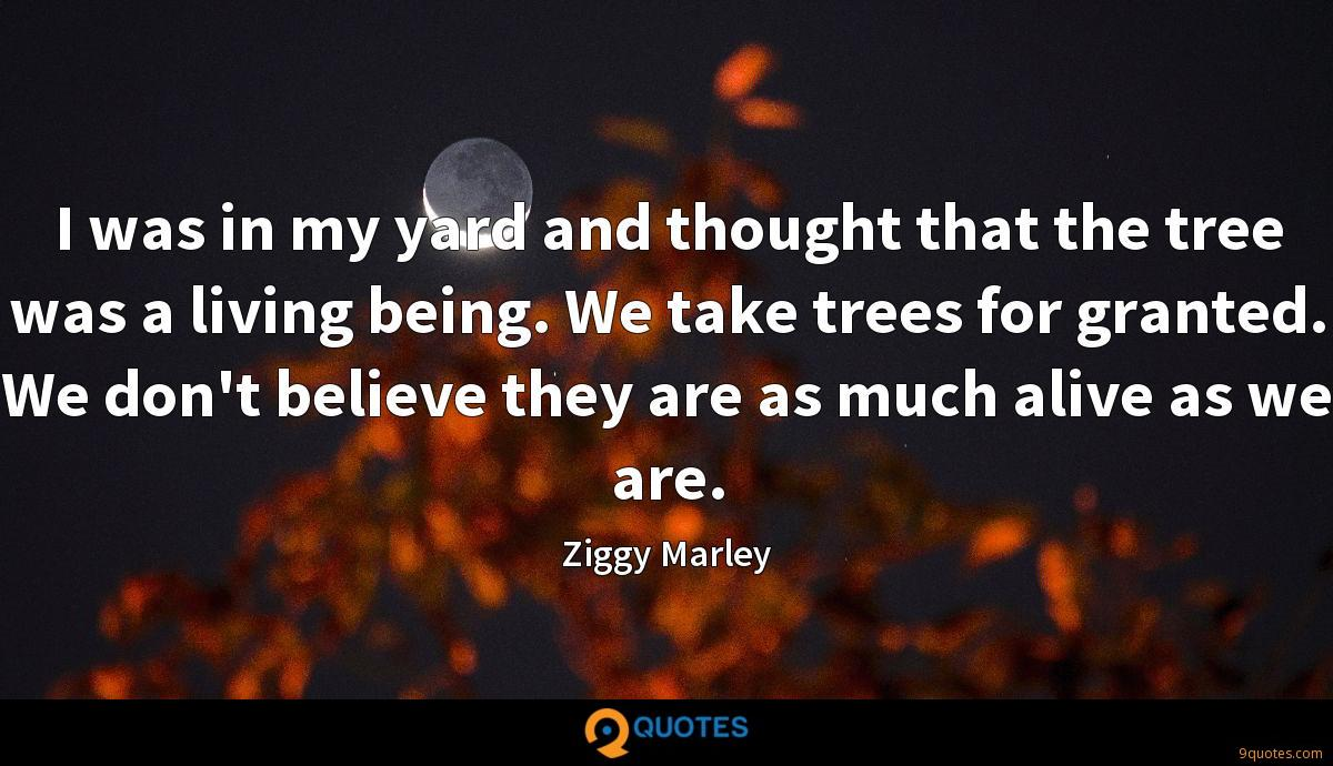 I was in my yard and thought that the tree was a living being. We take trees for granted. We don't believe they are as much alive as we are.