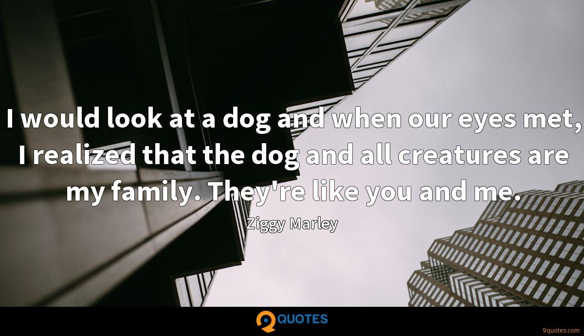 I would look at a dog and when our eyes met, I realized that the dog and all creatures are my family. They're like you and me.